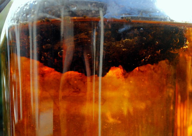 Natural dye with Pisolithus tinctorius
