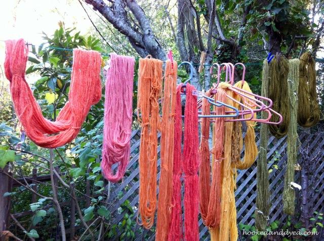 Mushroom dyed yarn