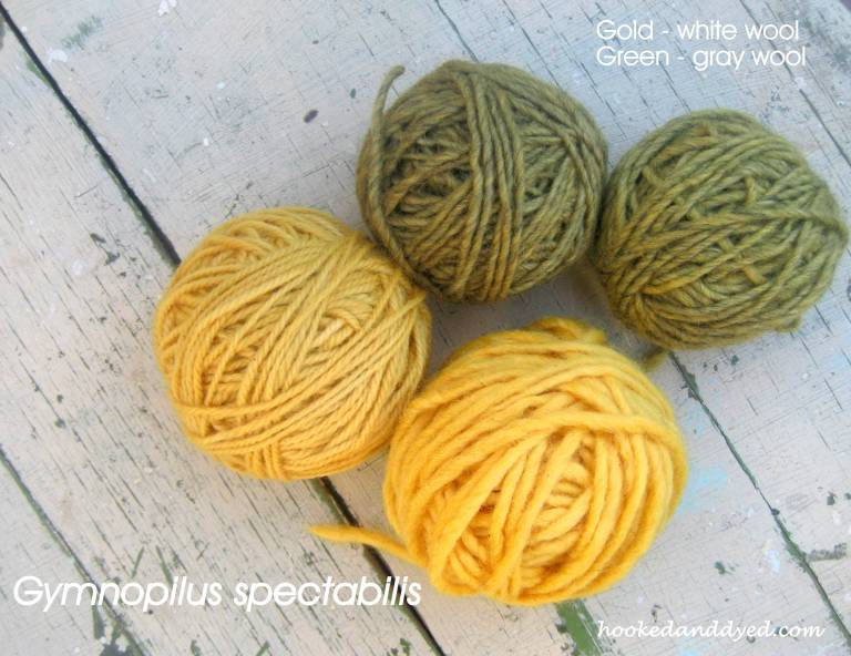 Green and gold yarn, Gymnopilus spectabilis