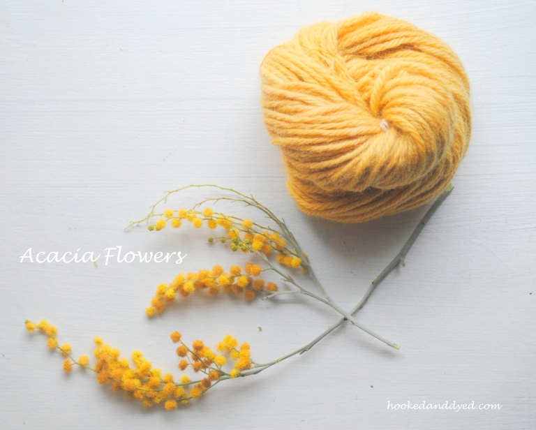 Natural Dye with Acacia Flowers