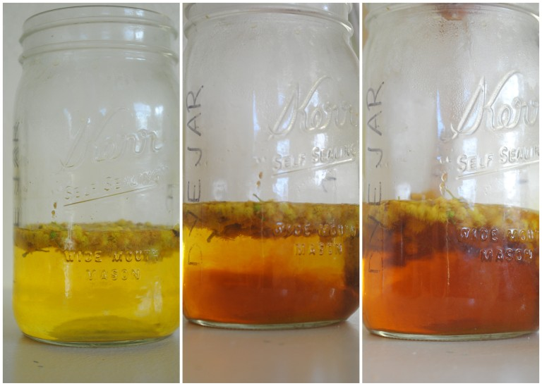 Washingsoda added to acacia dye