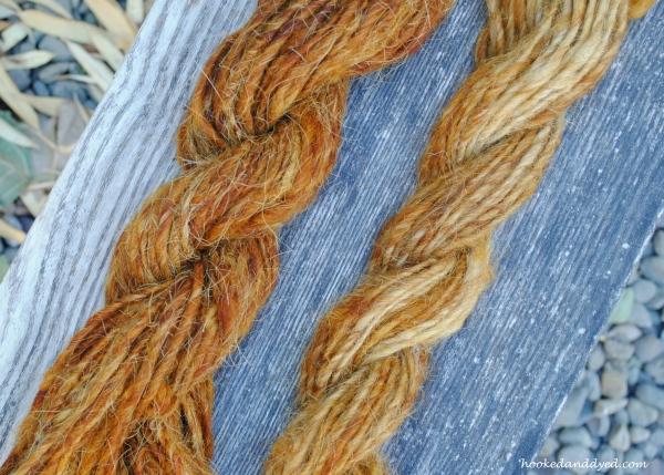 Natural dye of Pisolithus arhizus on llama fiber