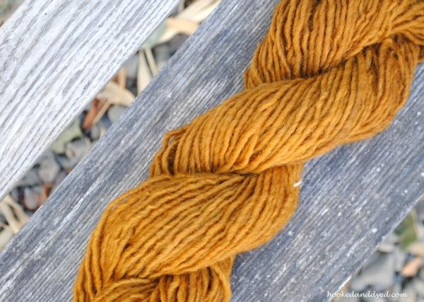 Pisolithus arhizus on lamb's wool