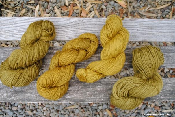 Mushroom Dyed Yarn Phaeolus schweinitzii