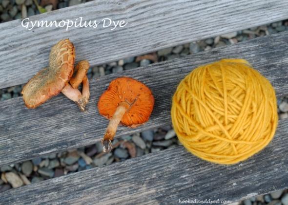 Gymnopilus Mushroom dye