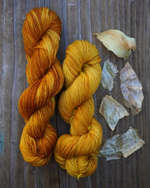 Yellow and orange wool skeins naturally dyed with onion skins