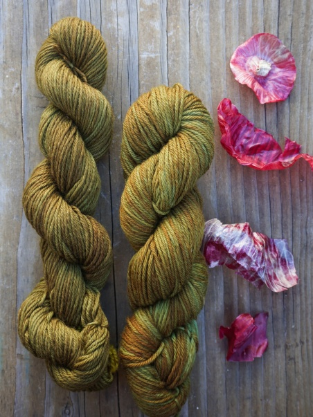 Skeins of wool yarn naturally dyed with red onion skins