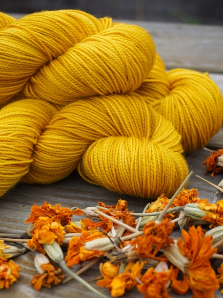 Wool naturally dyed with Marigold flowers